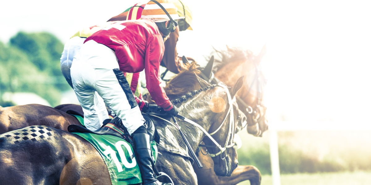 Optimum Pay Group takes a punt as new sponsor at Uttoxeter Racecourse - Featured Image